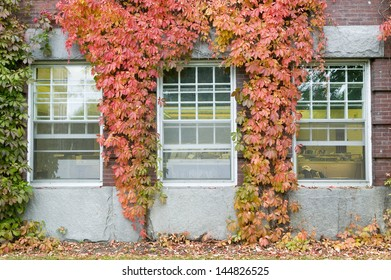 Vine covered building on the campus of Dartmouth College in Hanover, New Hampshire