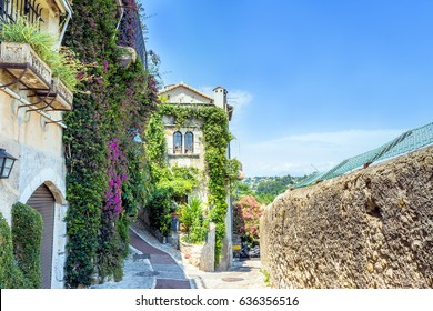 Vine covered homes along ancient street in St. Paul de Vence, Provence, France