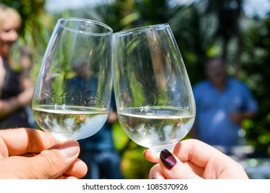 Vine degustation in vinho verde region in Portugal