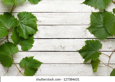 Vine leaves on a white wooden background
