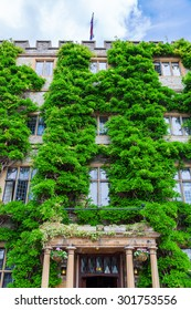 vine overgrown old building in Taunton, Somerset, England