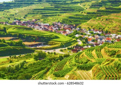 Vine plantations in picturesque mountain valley in Germany on a summer day. Scenic countryside landscape with an old historic village. Colourful travel and hiking background.