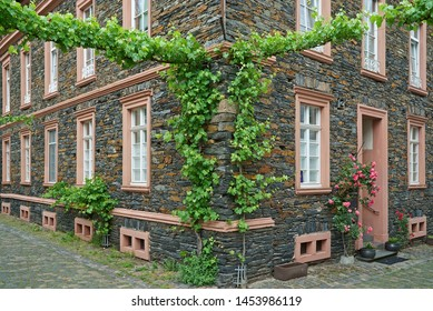 Vine tendrils crossing the streets in village Traben-Trarbach along the river Moselle in Germany