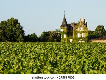 Vine-clad chateaux overlooking vineyard in Bordeaux, France
