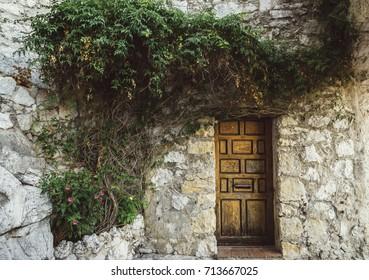 Vines on wooden doorway