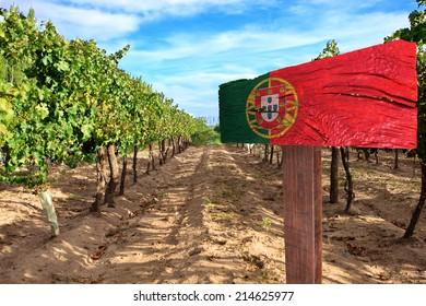vineyard cabernet sauvignon from Portugal