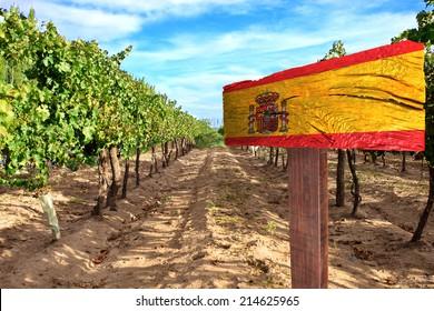 vineyard cabernet sauvignon from Spain