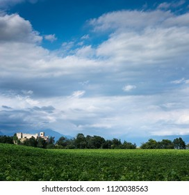 Vineyard and castle in the Hills of Lake Garda,in Italy
