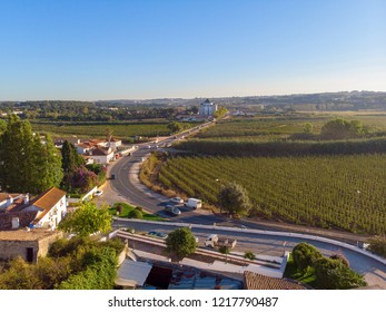 vineyard and castle from wall of fortress. Obidos village, Portugal.