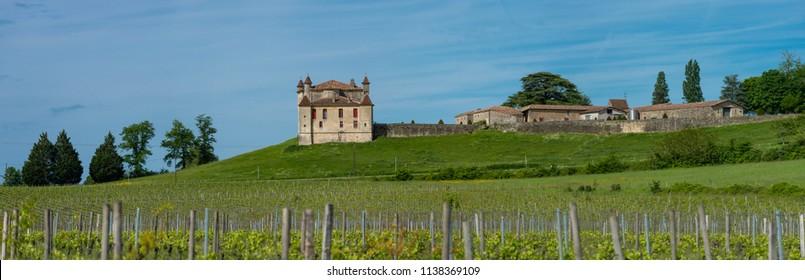 Vineyard and Chateau de Monbadon, Bordeaux Region, France, Europe