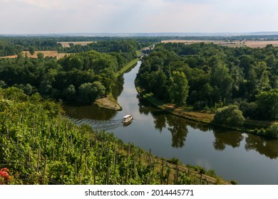 vineyard, elbe and canal confluence by boat in melnik in the czech republic