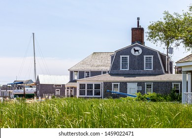 Vineyard Haven, Martha's Vineyard, MA, USA - June, 2019: Iconic black dog restaurant and tavern with field in foreground