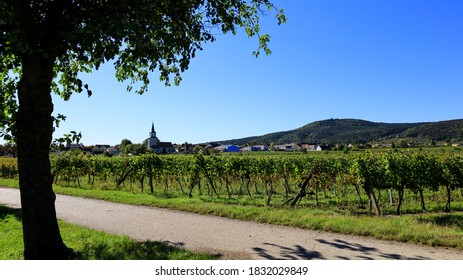 Vineyard landscape in October at Soss (between Baden und Bad Voeslau), a popular excursion place for hiking and vining.  - Shutterstock ID 1832029849