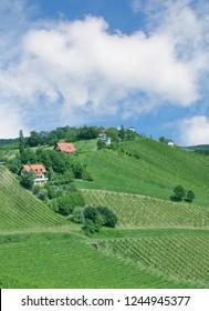 Vineyard Landscape in Styria near slovenian Border called styrian Tuscany,Austria