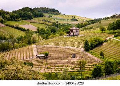 Vineyard with a little farm on the top of the hill, viticulture near Barolo. Coutriside province of Cuneo, Piedmont, Italy.