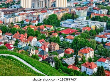 Vineyard on Piramida Hill and cityscape in Maribor, Lower Styria, Slovenia