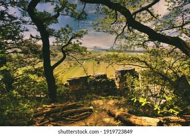 Vineyard overlooking the river Neckar, Landscape of Hessigheim, Germany