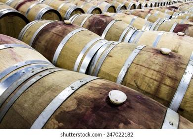 The Vineyard Red Wine Barrel Room