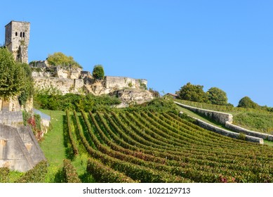 Vineyard at Saint-Emilion, UNESCO World Heritage Site in France