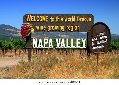Vineyard at Sonoma and Napa Valley, California
