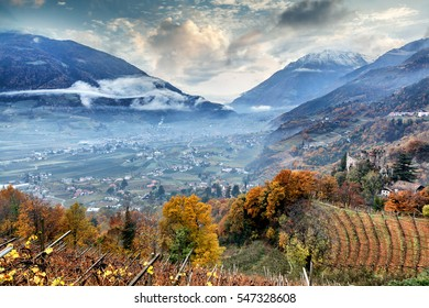 Vineyards in the Alpine mountains, Italy, South Tyrol, Meran. Travel concept, Beautiful landscape.