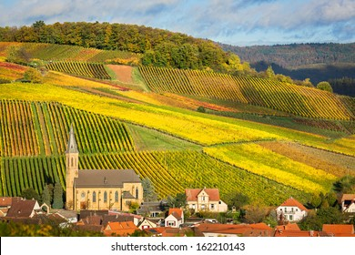 Vineyards with autumn colors, Pfalz, Germany