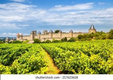 vineyards in Carcassonne, France