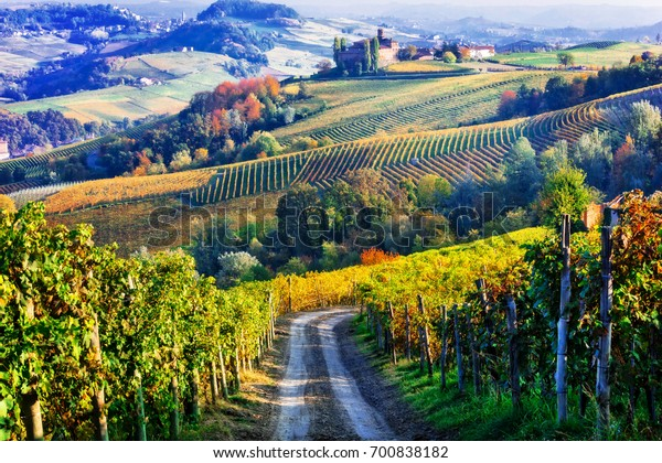 Vineyards and castles of Piemonte in autumn colors. North of Italy
