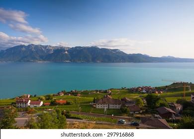 Vineyards of the Chexbres region over lake Leman (lake of Geneva),Switzerland