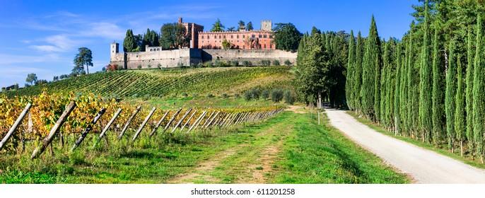 Vineyards in Chianti region of Tuscany. Italy
