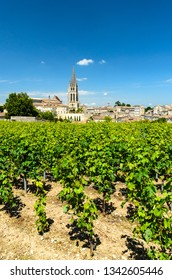 Vineyards with Church Bell tower on the background, Saint-Emilion, Bordeaux, France.