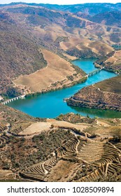 vineyards and the Douro River, Alto Douro Wine Valley