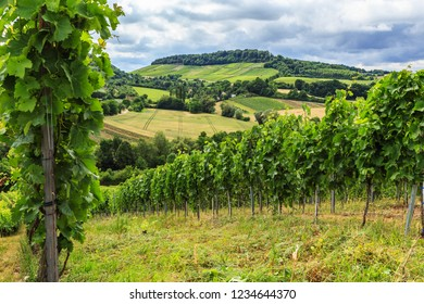 Vineyards and dramatic storm clouds, Heilbronn, Germany. Schemelsberg Weinsberg vineyard and the panoramic view of the hills in Heilbronn, Baden Wuerttemberg, Germany.