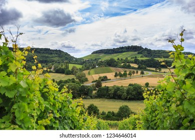 Vineyards and dramatic storm clouds, Heilbronn, Germany. Schemelsberg Weinsberg vineyard and the panoramic view of the hills in Heilbronn, Baden Wuerttemberg, Germany