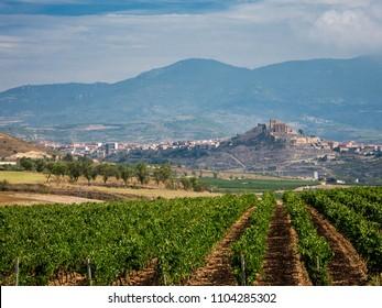 Vineyards and landscape seen from Bodega Vivanco in Briones, Spain.
