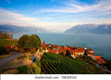 Vineyards of the Lavaux region over lake Leman (lake of Geneva),Switzerland, HDR Image.