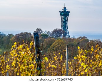 The vineyards in Lendavske gorice on an autumn day with the Vinarium view tower rising in the background