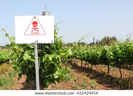Vineyards. Prevention sign of danger on plantation after the insecticide's treatment against insect pests. Start of growing grapes season. Pest control. Agricultural theme.