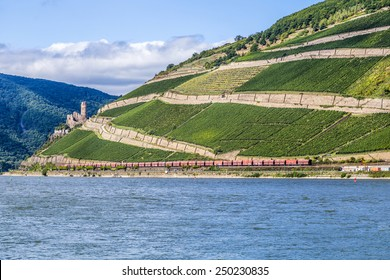 vineyards at  the rhine valley in Ruedesheim with train and castle Kaub