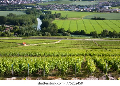 """Vineyards and the River Marne at Hautvillers near Epernay (in background), south of Reims in northern France. Epernay is best known as the principal """"entrepot"""" for champagne wines"""