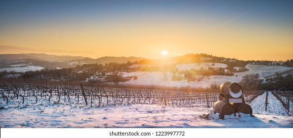 Vineyards rows covered by snow in winter at sunset and barrels of wine. Chianti region countryside, Siena, Tuscany, Italy