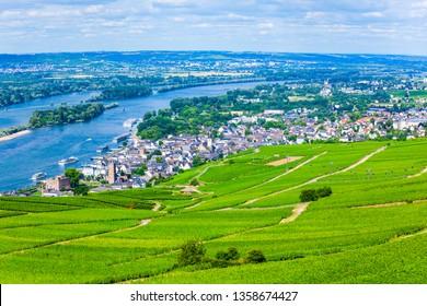 Vineyards, Rudesheim am Rhein and Bingen am Rhein town aerial panoramic view in the Rhine Valley, Germany