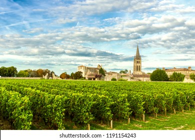 Vineyards of Saint Emilion, Bordeaux Wineyards in France in a sunny day