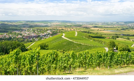 Vineyards in southern Germany