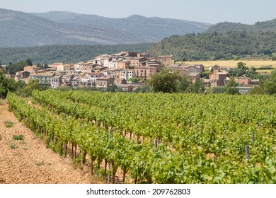Vineyards in spring with picturesque village at background, Catalonia, Spain