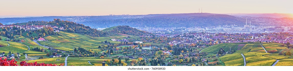 Vineyards in Stuttgart - colorful wine growing region in the south of Germany with view over Neckar Valley