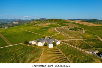 Vineyards in Tokaj region Hungary. Famous wine-producing countryside which a part of Unesco world heritage site. Many world famous sweet wine make here. For example Tokaji 6 putttonyos aszu wine.