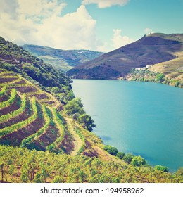 Vineyards in the Valley of the River Douro, Portugal, Retro Effect