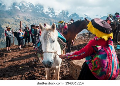 VINICUNCA, PERU- OCTOBER 29: female guide in traditional wear holds white mule at high altitude grounds in Vinicunca, Peru on October 29, 2019