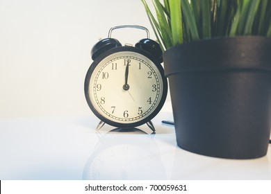 Vintage alarm clock and green plant on table ideal for concept of measuring passing time, waiting,deadlines and time management